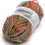 Gjestal Janne Space sock yarn